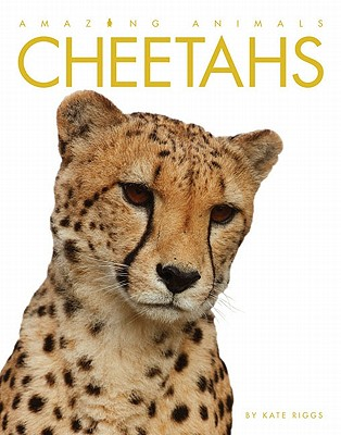 Cheetahs By Riggs, Kate